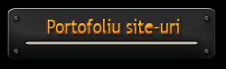 Portofoliu SiteConstruct Web Design