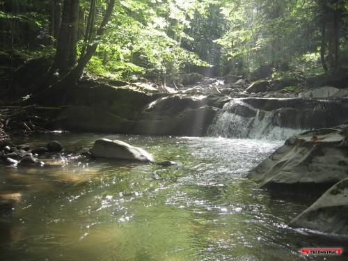 Cascada zona Brates 1