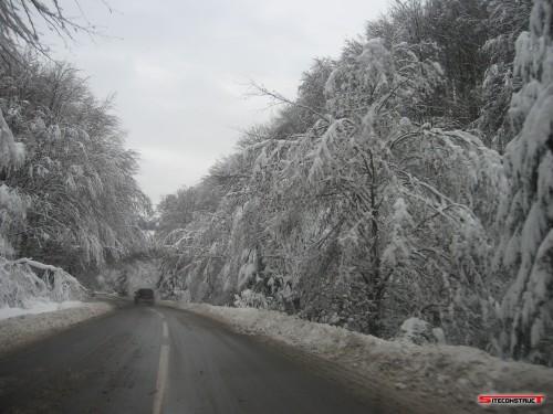 Iarna in Praid 2